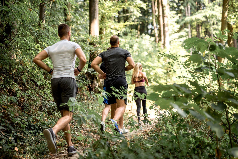 Jogger auf einem Waldweg; Thema: nachhaltige Versicherungen